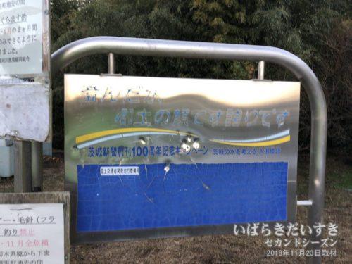 茨城新聞創刊100周年記念キャンペーン:澄んだ水 郷土の顔です 誇りです