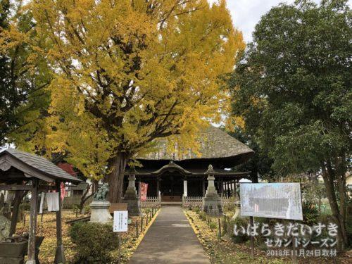 妙福山 佐竹寺 本堂 (国指定重要文化財)