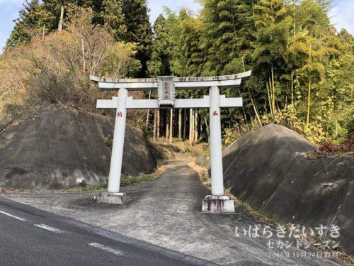 武生林道にある、武生神社鳥居。