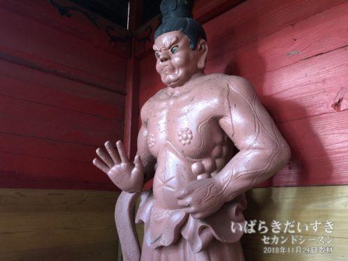 武生神社 仁王門 金剛力士像 吽形