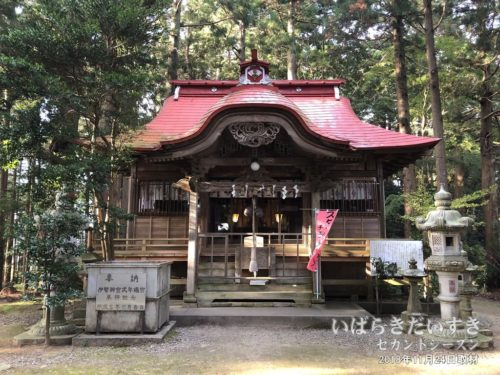 武生神社 拝殿
