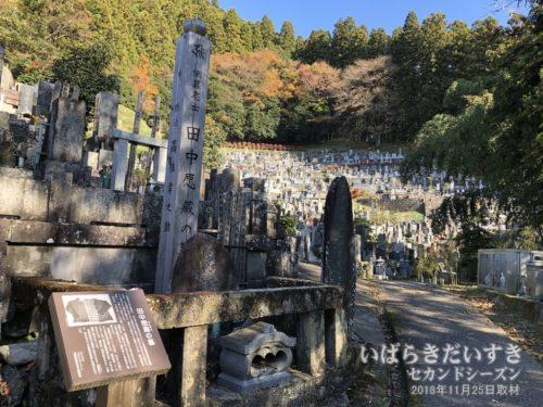 田中愿蔵の墓。安楽寺。