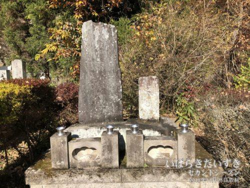 【 天狗党の墓 】<br>棚倉藩主松平周防守康英が処刑地に「三界万霊塔」の供養費を建立した、とあります。