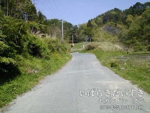 生活道路を進む<br>国道、県道とは異なり、地元の人が利用する生活感のある道路を進んでいきます。