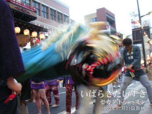獅子が舞い、(→)<br>桜町一丁目の獅子。スポンサーへのあいさつ回りで、店頭で踊ってくれます。