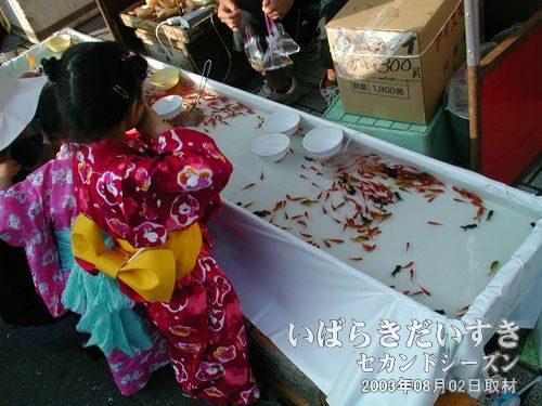 金魚すくい<br>お祭りの定番は、金魚すくいです(^^)。