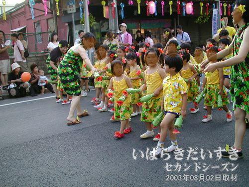 あおば連(子どもの部)<br>列の前半は、小さい子どもたちの踊り(?)から始まります。