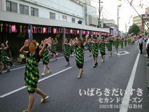 あおば連(女の子の部)<br>列の後半は、女子校生(?)集団で、楽しく踊ってくれます。