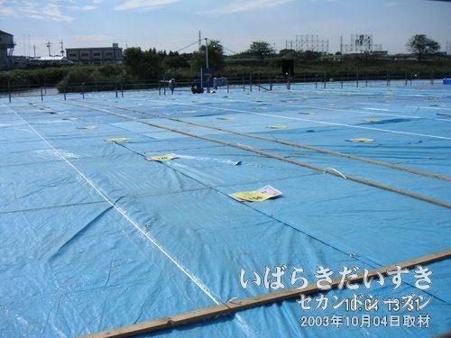 有料 桟敷席<br>桟敷席は08月01日から販売開始されます。1マス1万円なので、安いと思います。