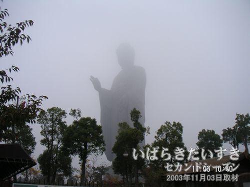 霧の中から現れる大仏様<br>霧が深すぎて大仏様の頭が確認できません。。ゆえに、大仏自体がとても大きく見えます。