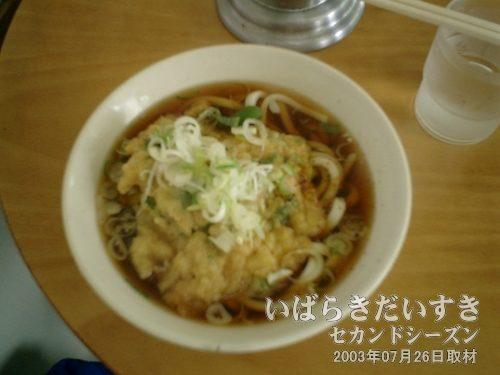 新松戸駅の天ぷらうどん<br>茨城訪問時には定番となっている、新松戸駅ホームにある駅そばの天ぷらうどん。汁が美味しい。