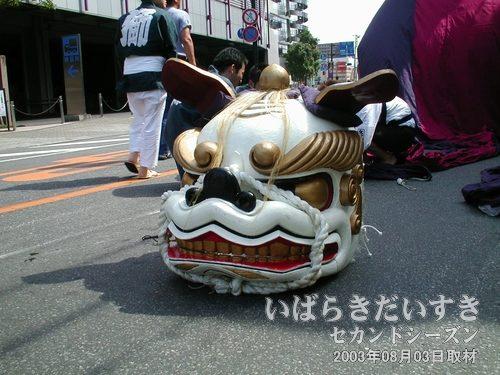 立田町の白い獅子頭<br>白い獅子は道路に置かれています。今にも動きそうな気配です。