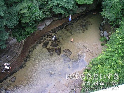 ホーム外の川にて<br>新神戸駅の新幹線ホームの窓からは川が見え、親子と犬が水遊びをしています。