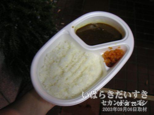 香辛飯屋のカレーライス<br>香辛飯屋のカレーも出店で購入することができました。本当は、香辛飯屋のお店で食べたい!