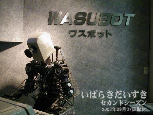 ワスボットくん / WASUBOT<br>静態保存されています。胴体保存するためには、年間1億円かかるとも言われています。