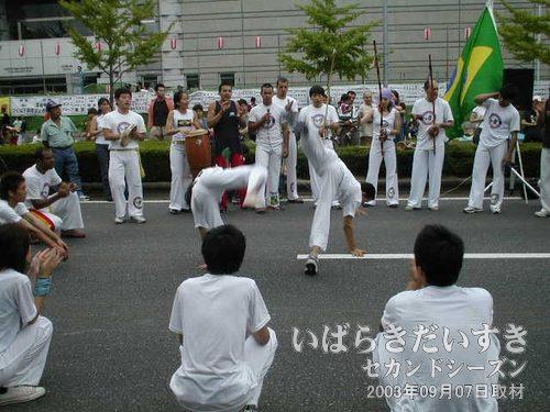 格闘ダンス<br>踊りと格闘がミックスしています。