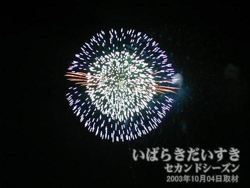 06:昇り銀竜八重芯変化ボタン残円<br>ファイアート神奈川