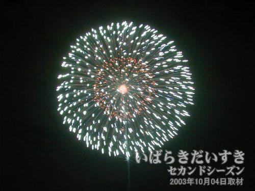 11:四重芯丁字菊先紫光露<br>加藤煙火