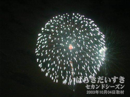 12:昇り小花三重芯変化菊<br>菅野煙火店