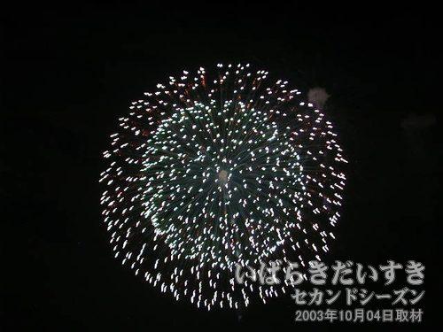 13:昇曲導三重芯変化菊<br>田熊火工品工場