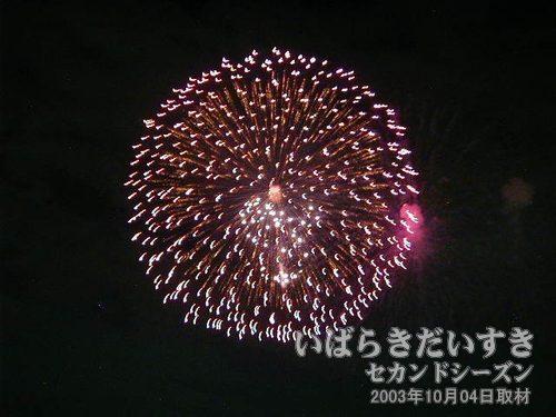15:昇り曲付八重芯変化菊<br>松田煙火店