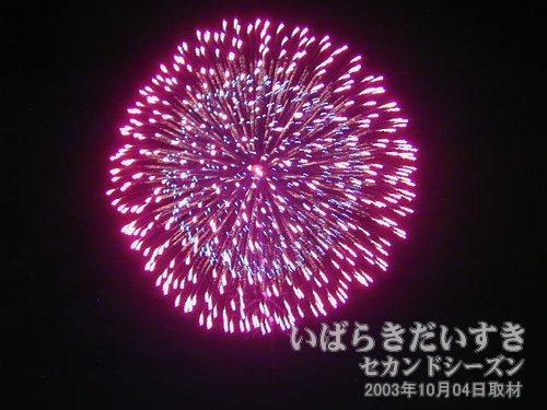 20:昇り曲付三重芯変化菊<br>元祖玉屋花火店
