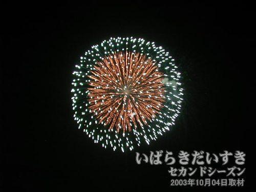 23:一福煙火店<br>昇り曲導付八重芯変化菊