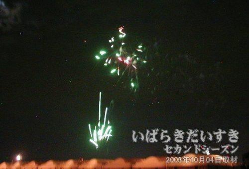 26:朝顔<br>豊田煙火