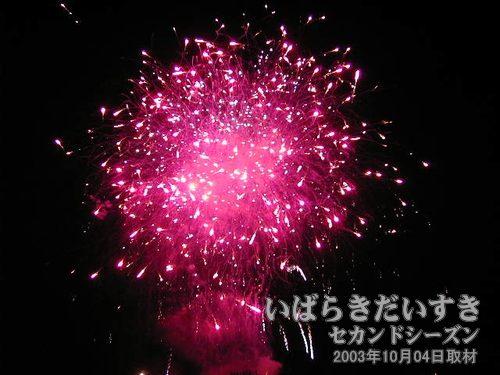 27:さくら<br>太洋花火