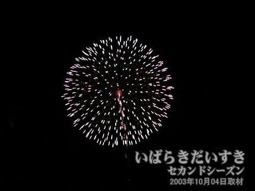 30:昇り銀龍付八重芯銀波変化菊<br>若松煙火製造所