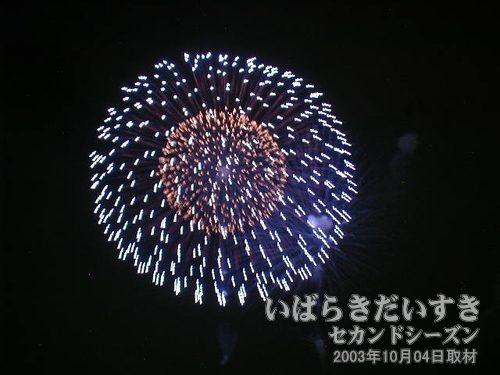 32:昇り小花八重芯変化菊<br>野口煙火店