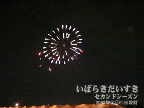 34:夜空の花模様<br>アルプス煙火工業