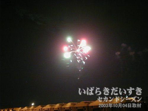 35:昇り曲付彩色柳先の花<br>菅野煙火店