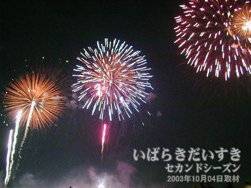 48:百花繚乱<br>元祖玉屋花火店