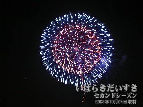 52:昇り曲付三重芯変化菊<br>糸井火工