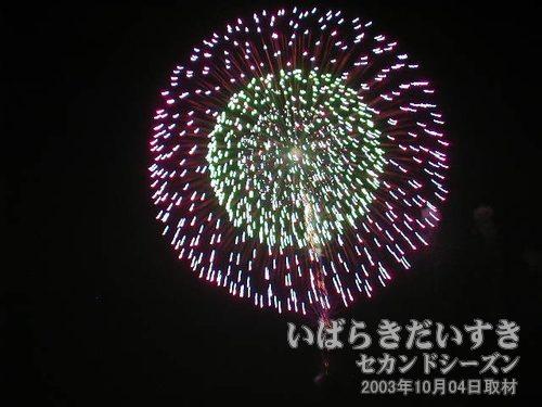 54:三重芯の花<br>伊那火工堀内煙火店