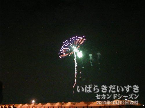 77:秋の味覚<br>信州煙火工業