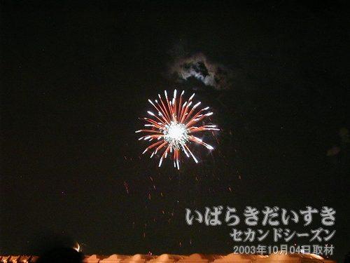 79:マジックフラワ<br>芳賀火工