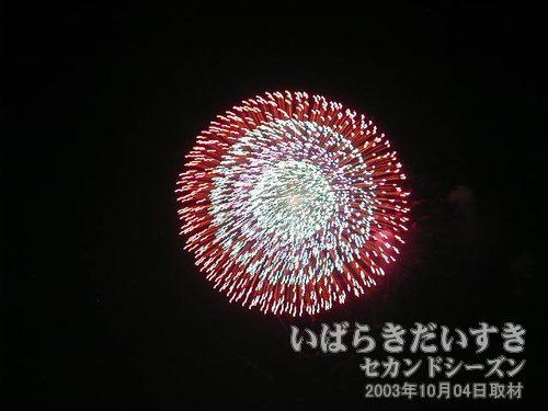 87:昇り曲導付四重芯変化菊<br>野村花火工業