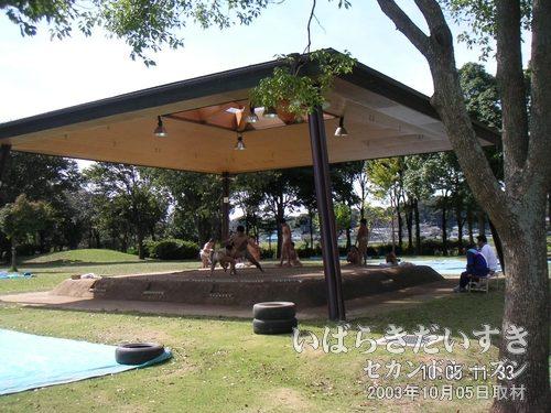土俵<br>土俵がある公園って、珍しいかも。