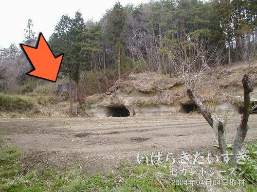 畑の向こうに旧トンネルのレンガが見える<br>桃内駅から県道120号を北上。左手にレンガ調のトンネルが見えます。