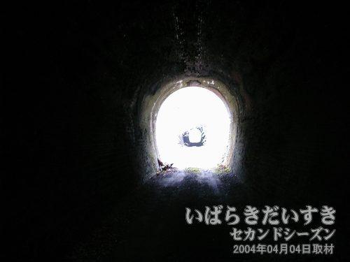 第三耳ヶ谷トンネルに入る<br>歩いてトンネルに入り、通過します。あっという間にトンネルは終わります。