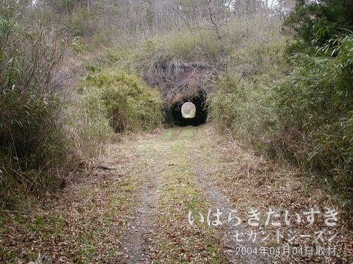 第三耳ヶ谷トンネルを抜ける<br>トンネルを抜けるとそこはトンネルだった。と言ったとか。先にトンネルがあります。