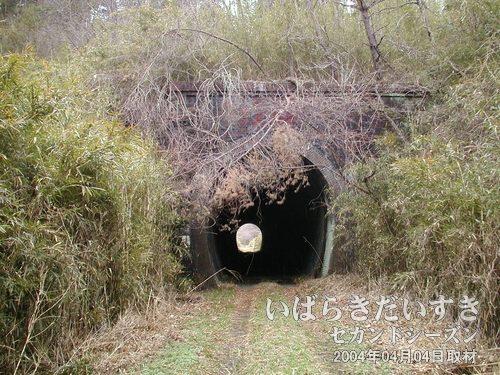旧 第二耳ヶ谷トンネル(いわき側)<br>藪に包まれつつありますが、かっちりとしたトンネル入口が確認できます。