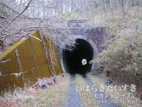 第一耳ヶ谷トンネル(いわき側)<br>自転車を持って旧線跡に戻ってくるとすぐに、第一耳ヶ谷トンネル。
