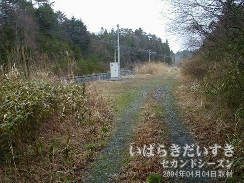 泉沢トンネルを抜ける<br>トンネルを抜けると、左手の常磐線現行線路に合流するように道はなくなります。