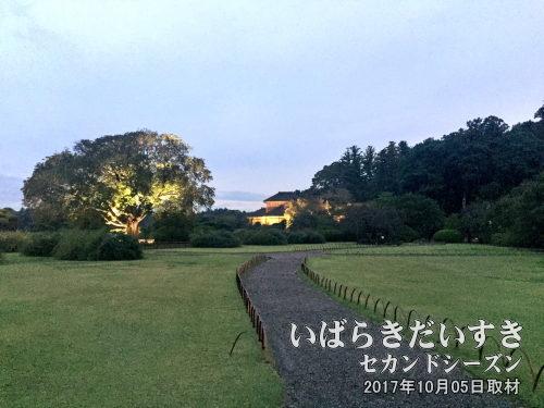 オフシーズンの偕楽園<br>梅まつり期間〔02月中旬~03月いっぱい〕以外の時期は、それほど観光客は多くありません。