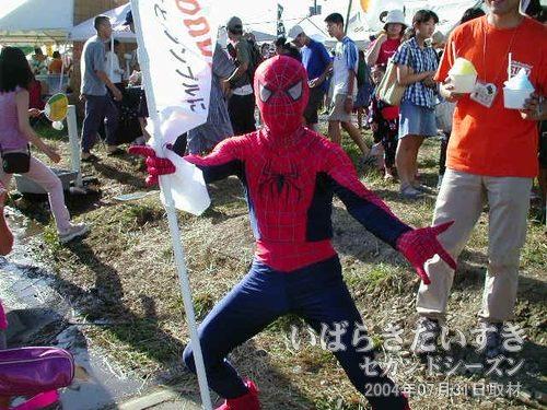 スパイダーマン<br>突然、スパイダーマンが!!(@@)。カメラを向けたら、ポーズを取ってくれました。