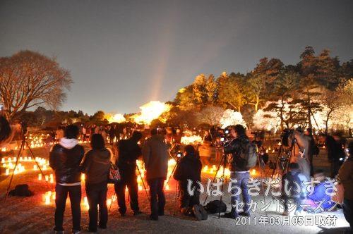 夜梅祭<br>夜の偕楽園でライトアップを行なうイベントです。