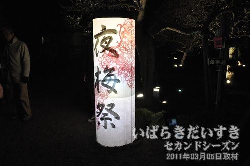 夜梅祭<br>提灯の展示。